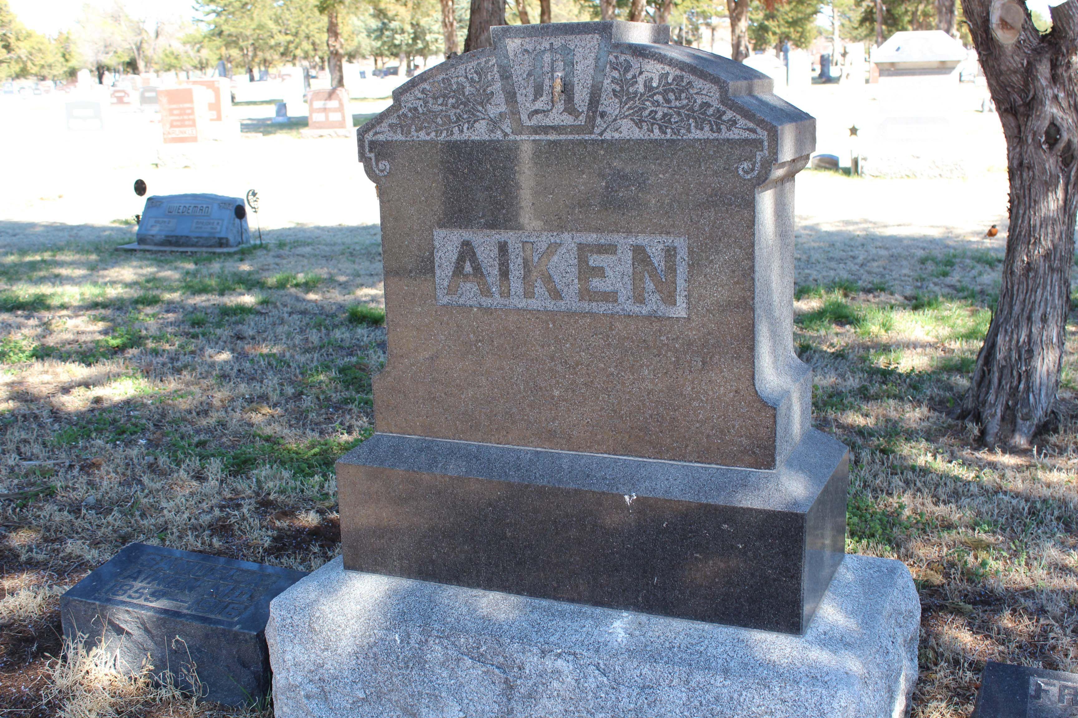 Infant Son Aiken