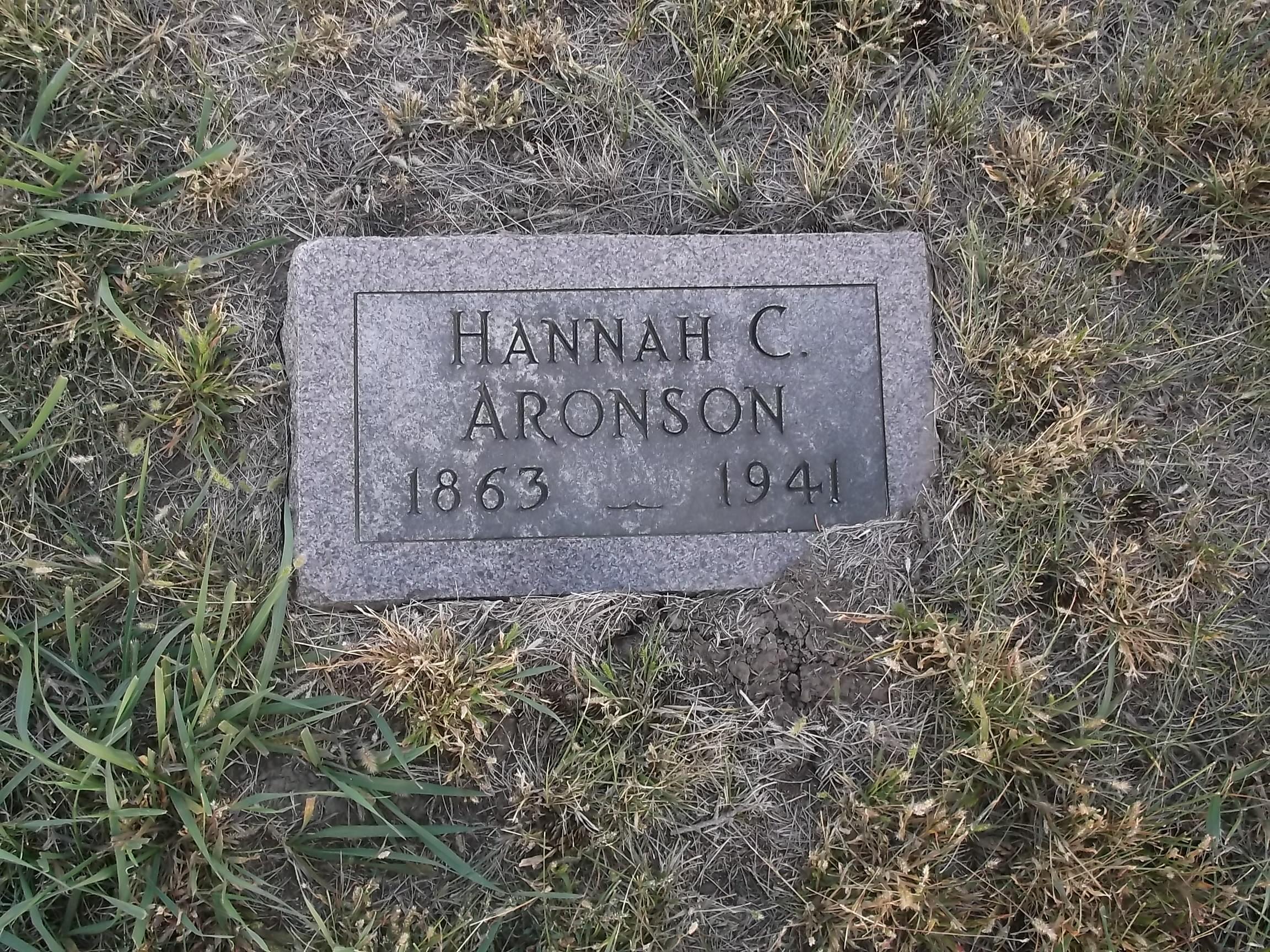 Hannah C Aronson