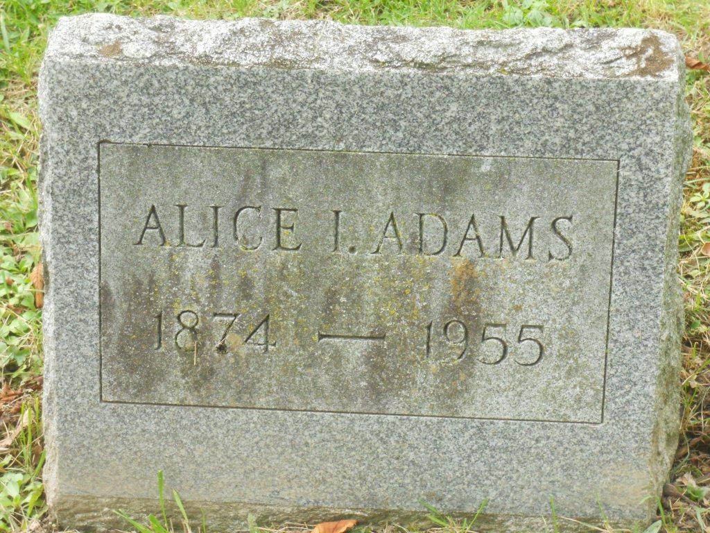 Alice <i>Jackson</i> Adams