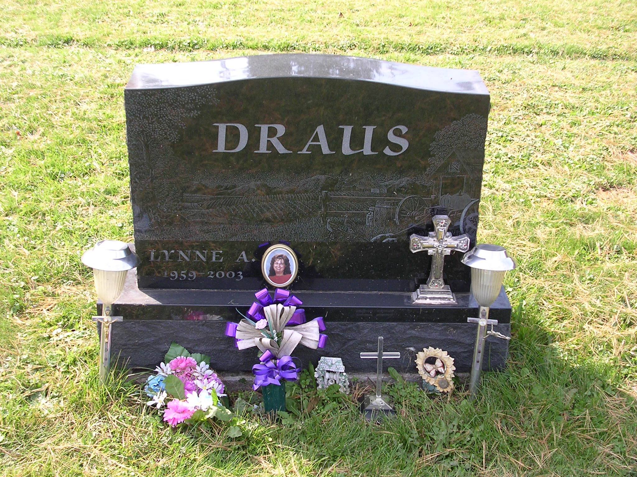 Lynne A. <i>Adams</i> Draus