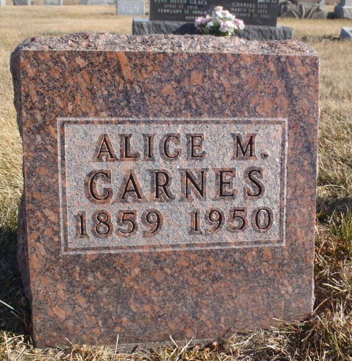 Alice Minerva <i>Chinn</i> Carnes