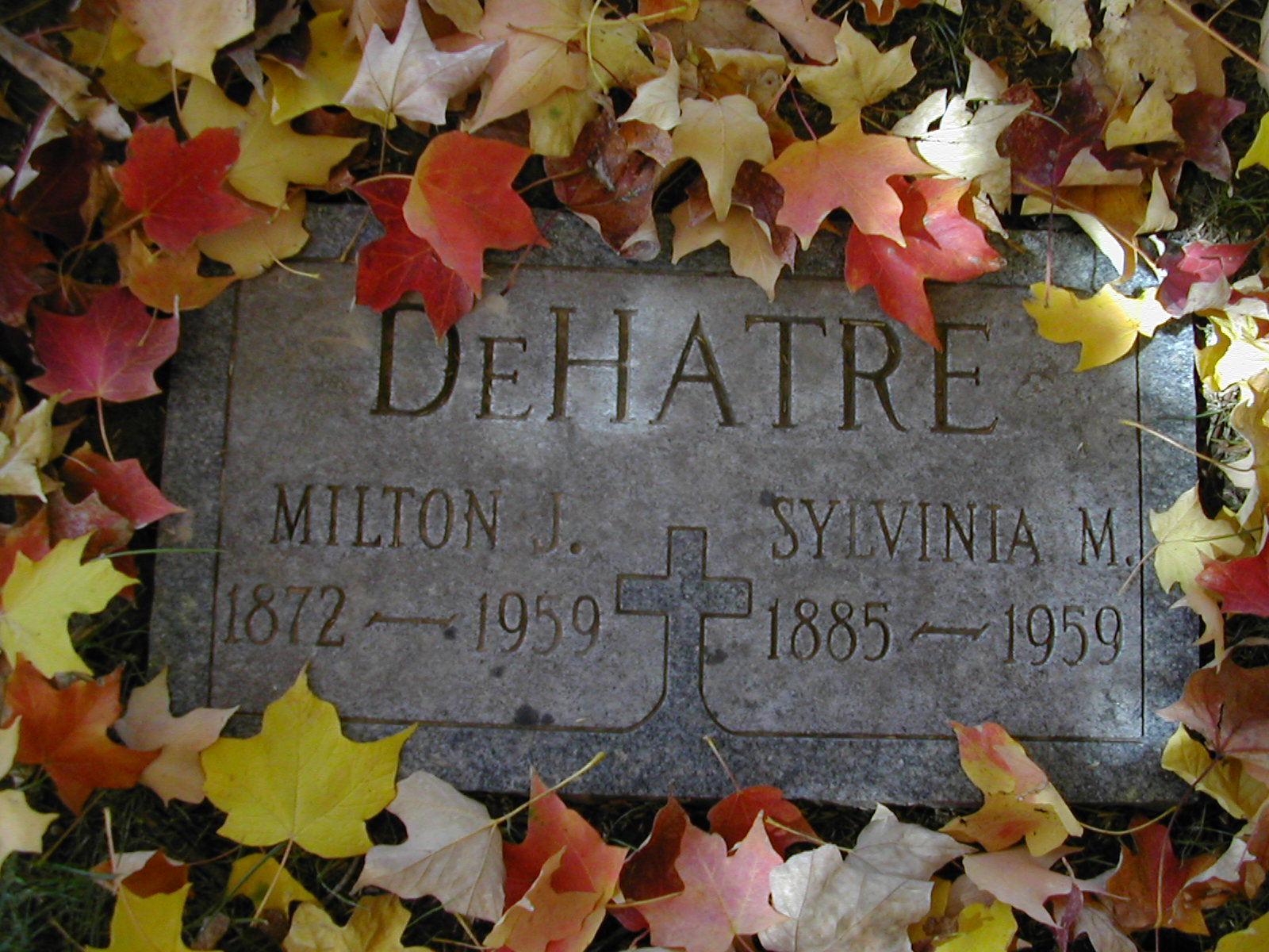 Sylvinia Vinnie <i>Aubuchon</i> DeHatre