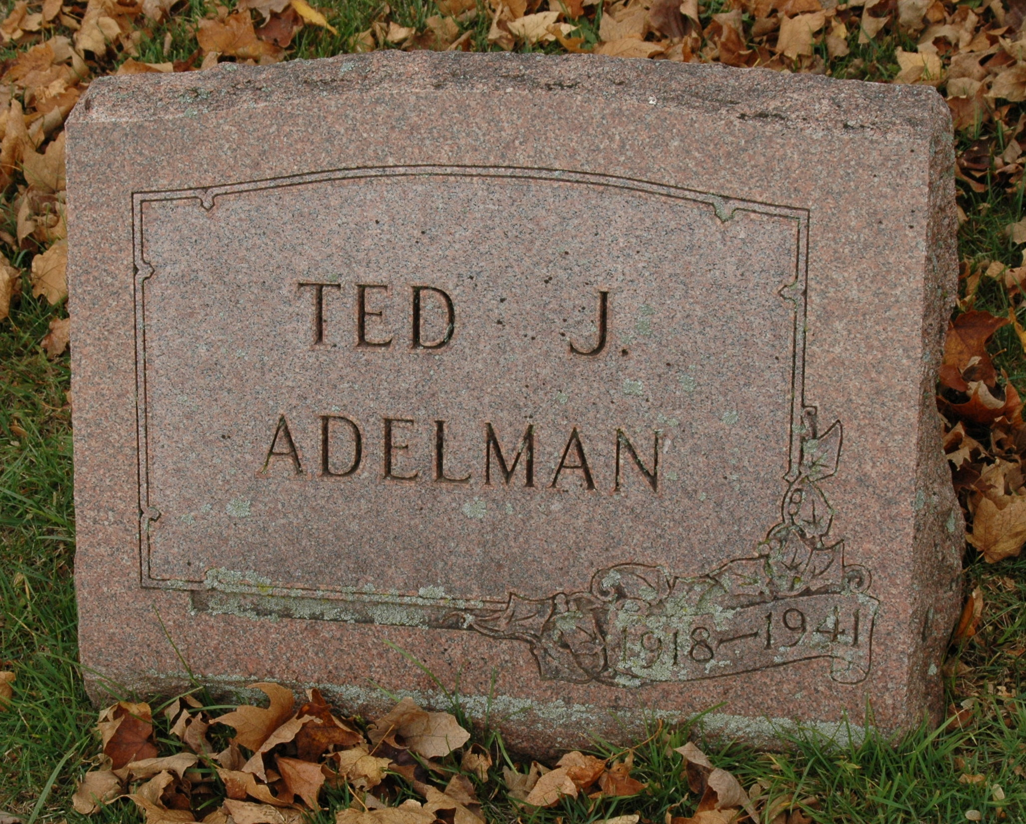 Ted J. Adelman