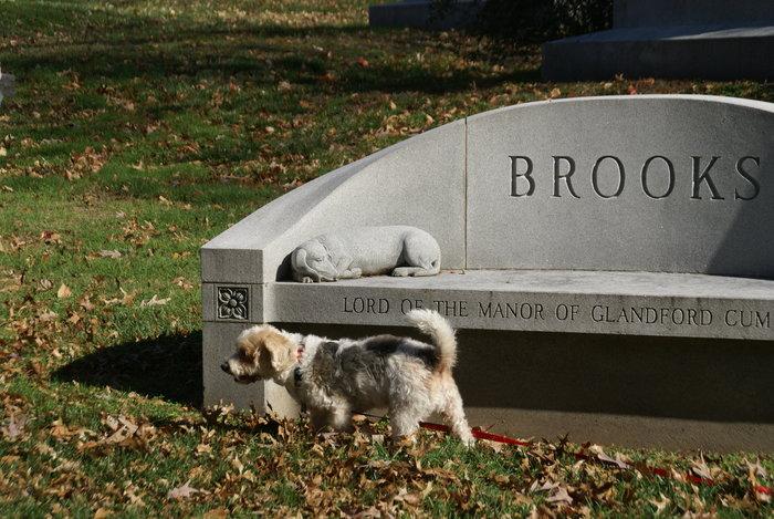 Marjorie <i>Raithel</i> Brooks