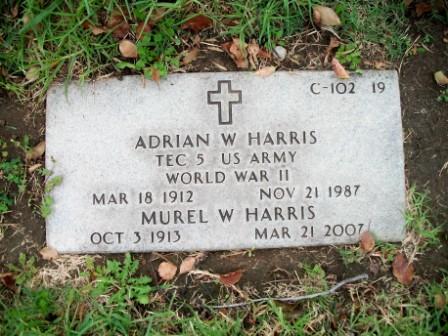 Adrian W Harris