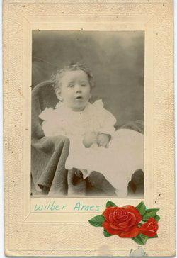 Wilbur Lester Ames
