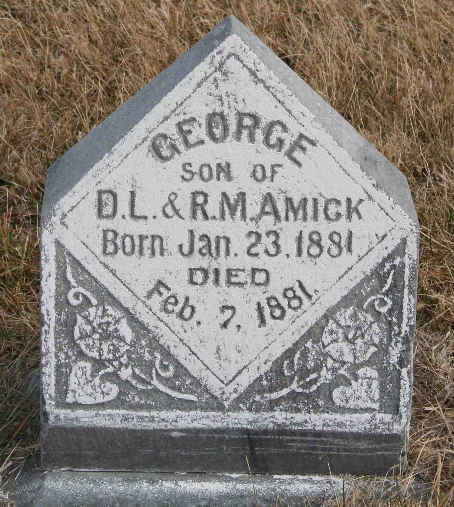 George B Amick