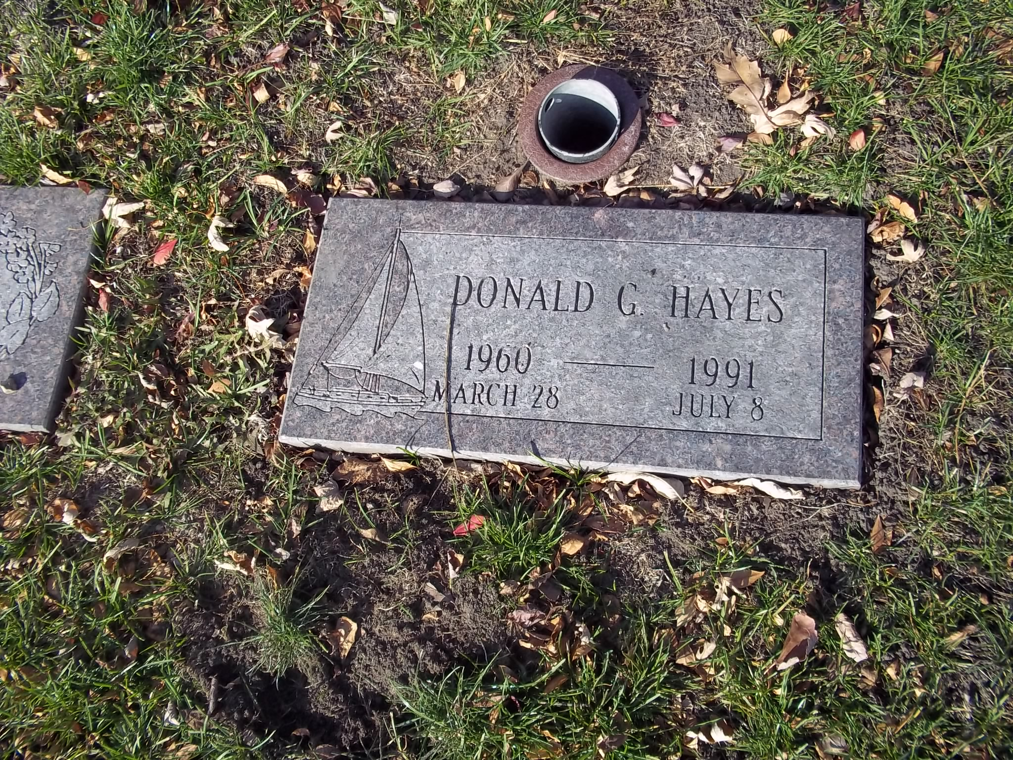 Donald G Hayes