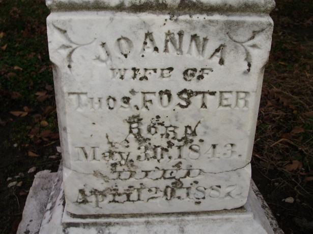 Joanna Foster