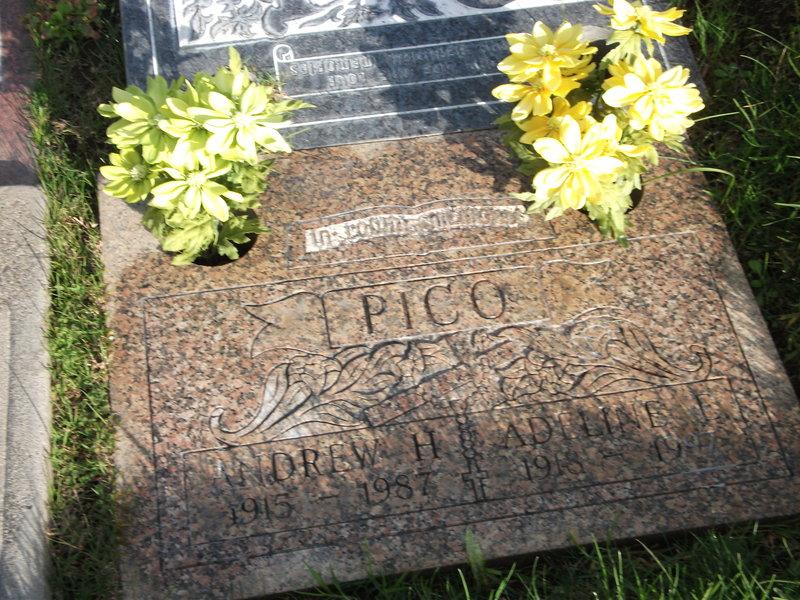 Andrew Harris Bud Pico