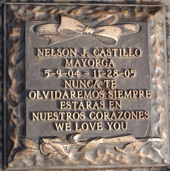 Nelson J. Castillo Mayorga