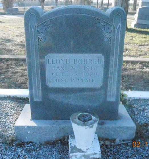 Lloyd Houston Borrer