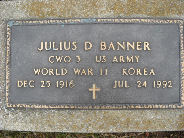 Julius David Banner
