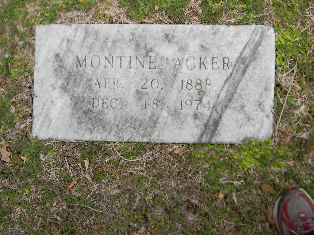 Montine Celestia <i>Nowell</i> Acker