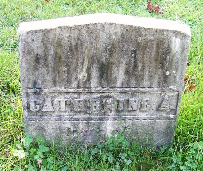 Catherine A <i>Haskell</i> Bubier