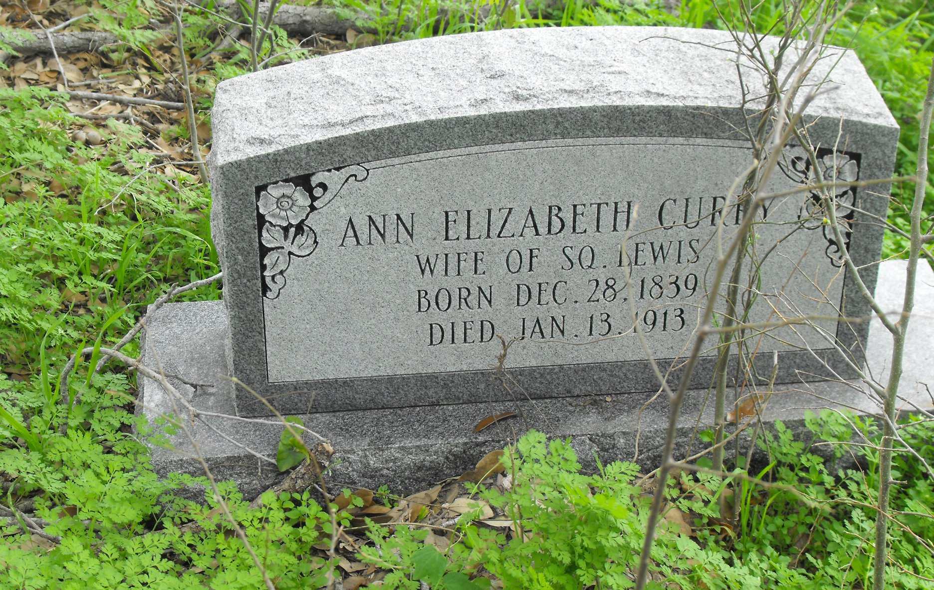 Ann Elizabeth <i>Curry</i> Lewis