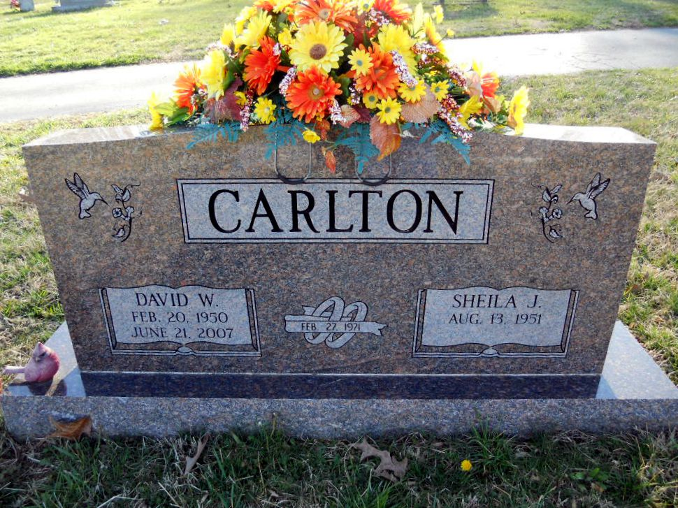 David W Carlton