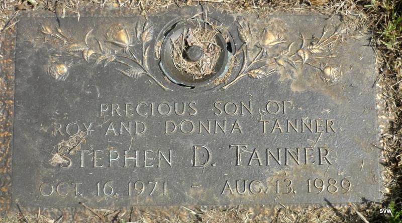 Stephen D Tanner