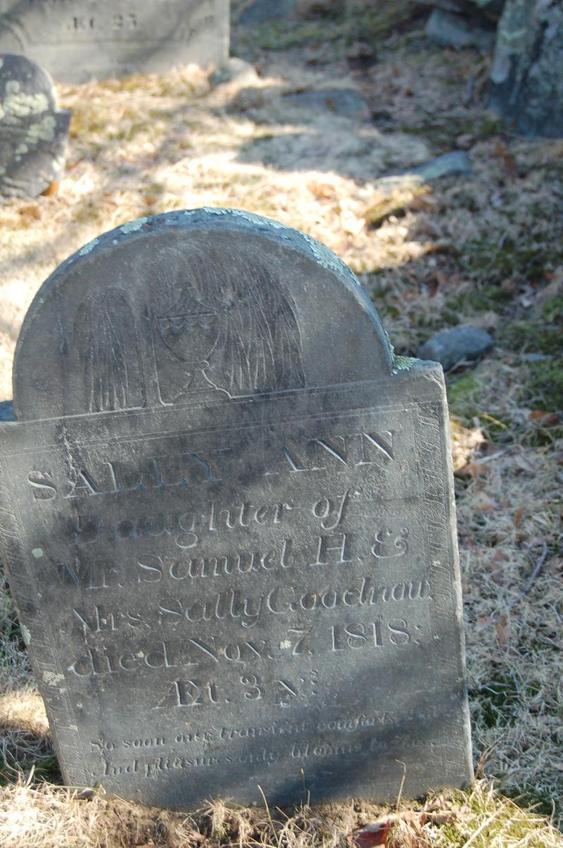 Sally Ann Goodnow