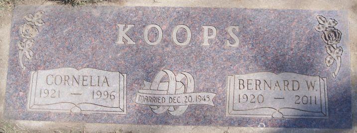 Bernard W Koops