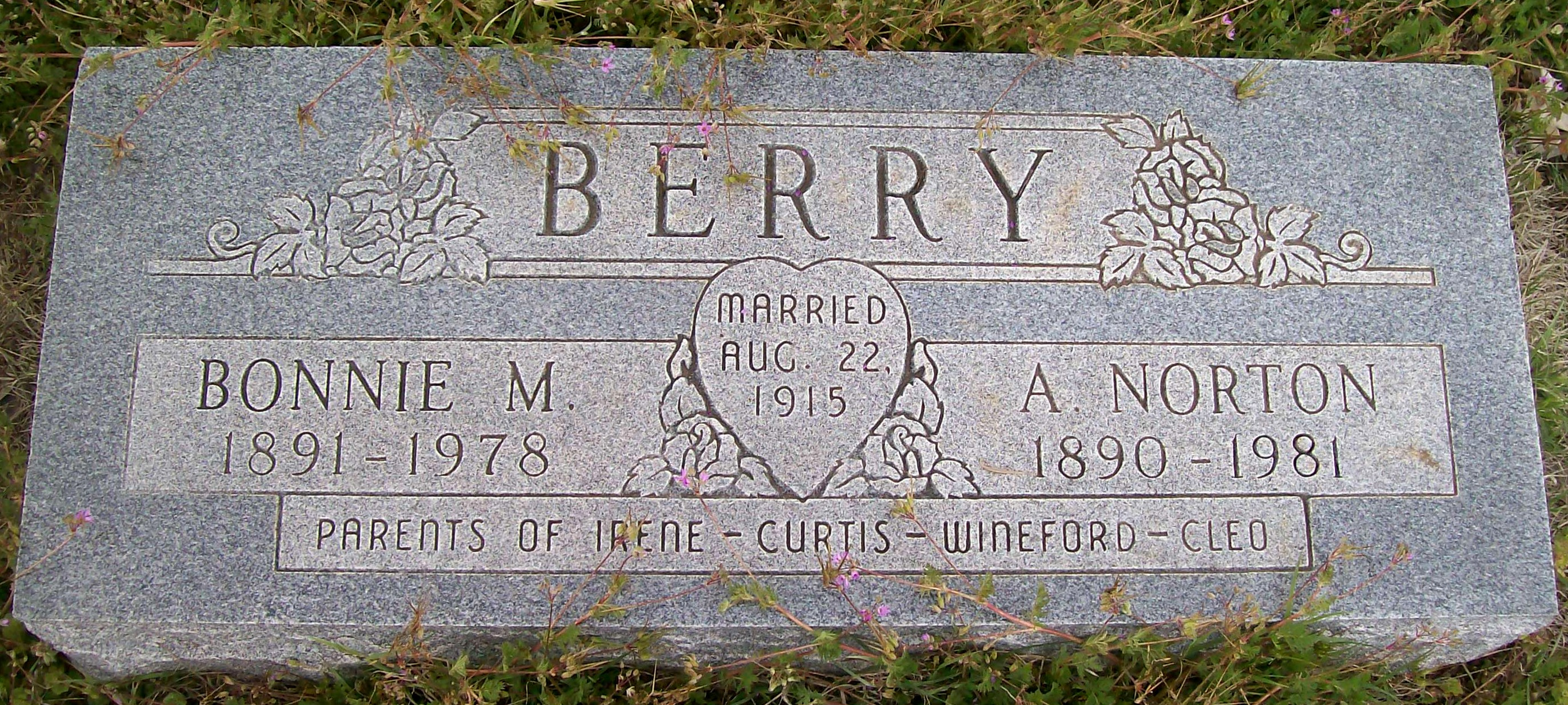 Alvin Norton Berry