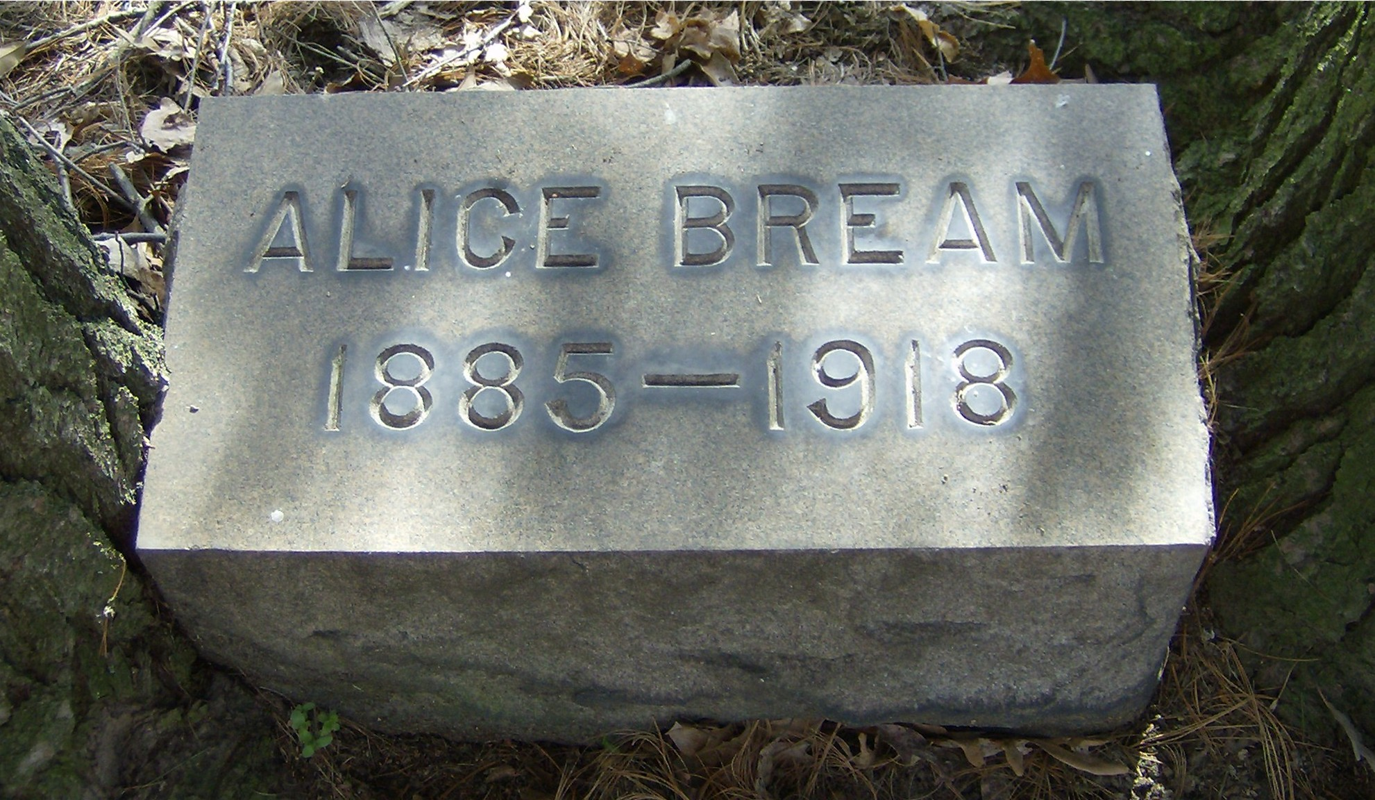 Alice Agnes <i>Scott</i> Bream