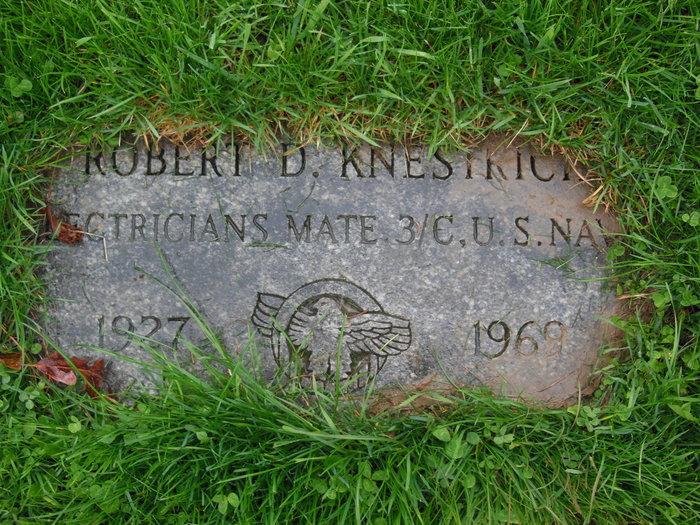 Robert Dulin Knestrick