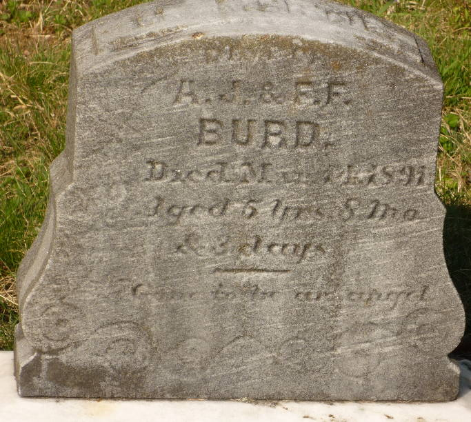 M Mertie Burd