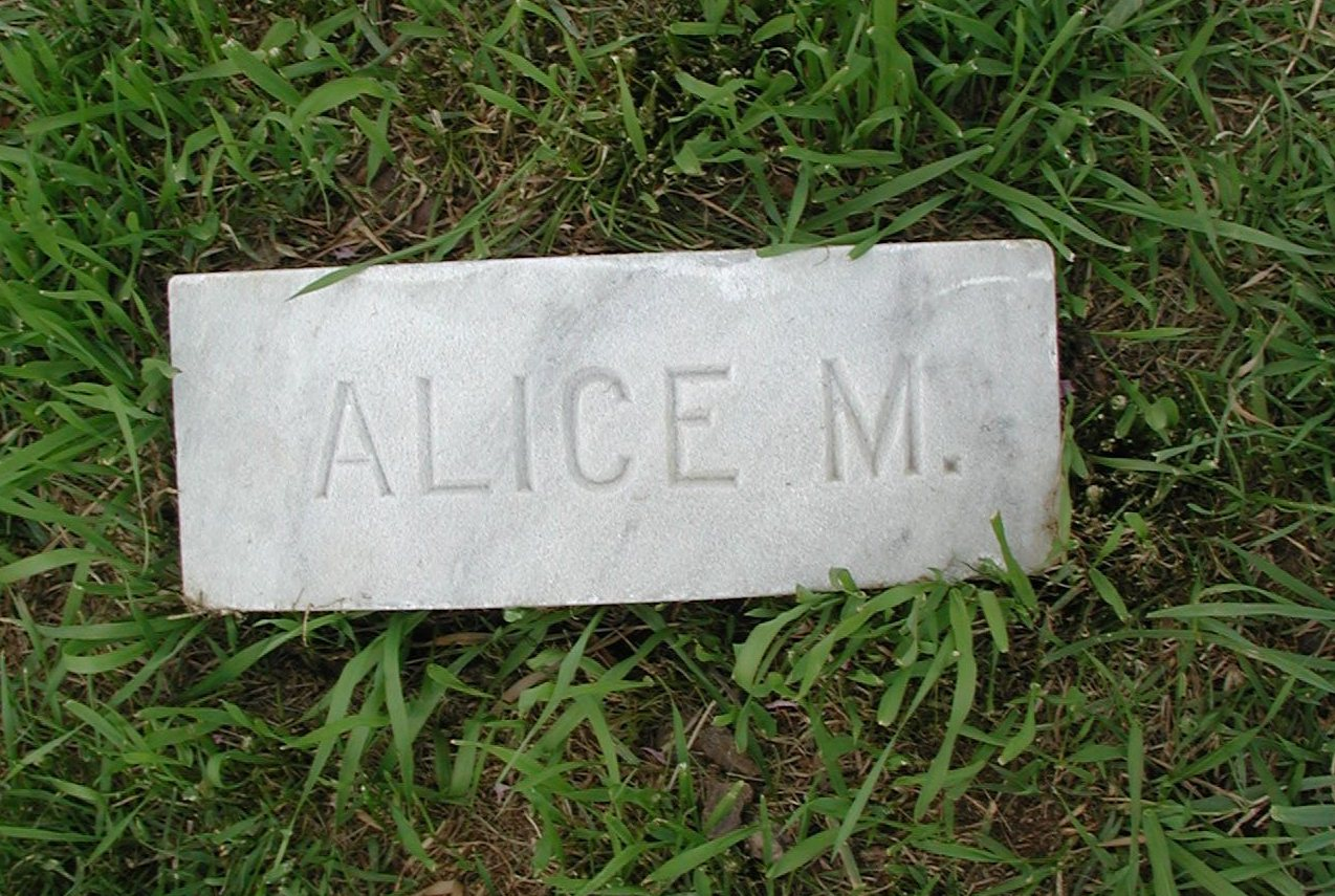 Alice <i>Moody</i> Adams