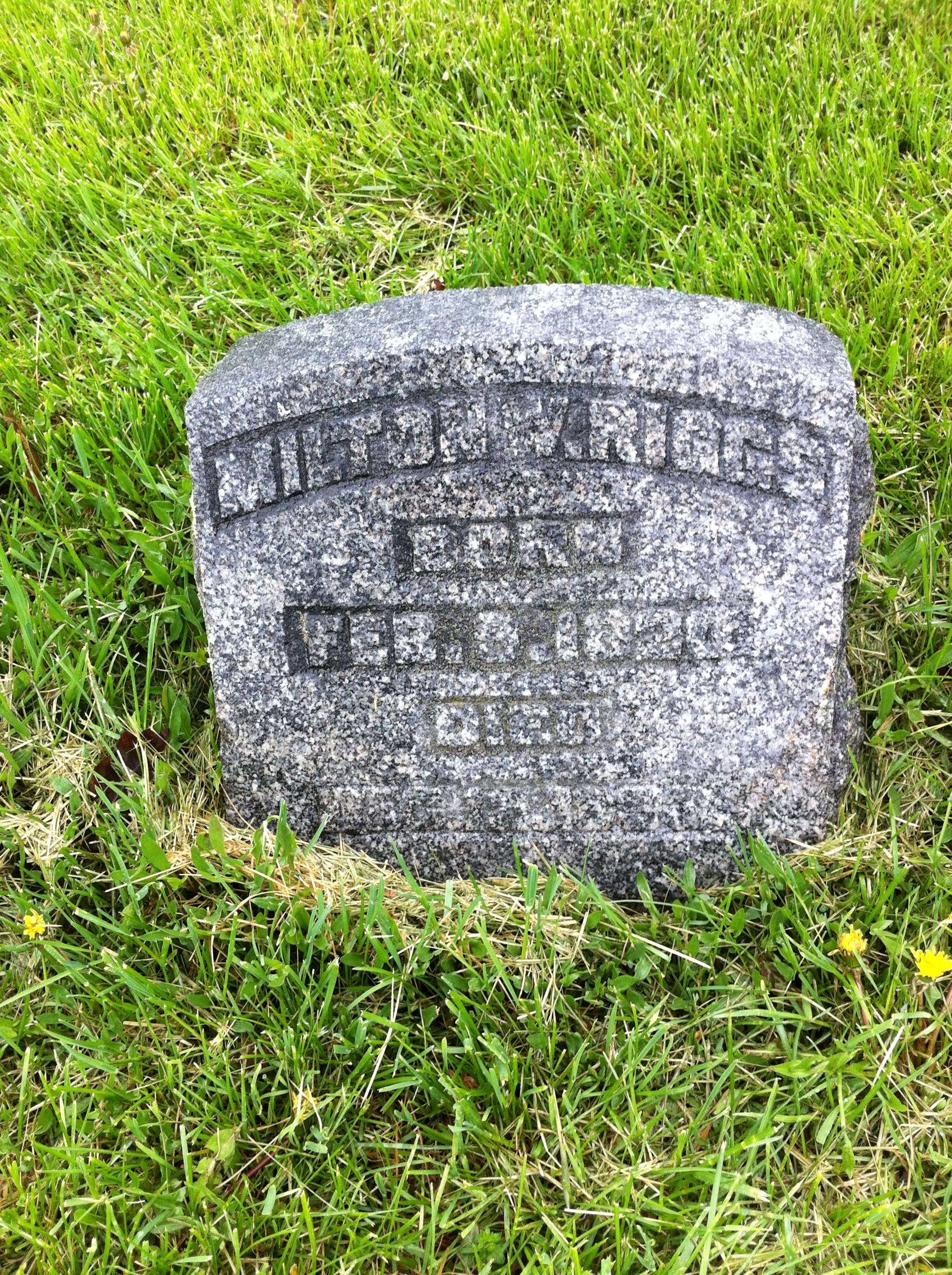Milton W Riggs