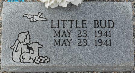 Little Bud