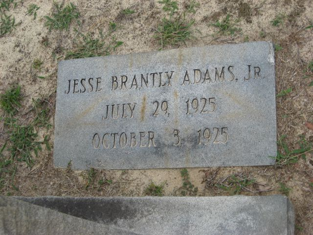 Jesse Brantly Adams, Jr