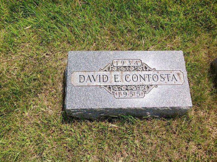 David Edward Contosta