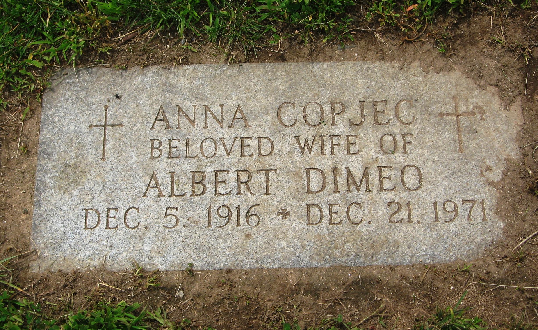 Ann <i>Copjec</i> DiMeo