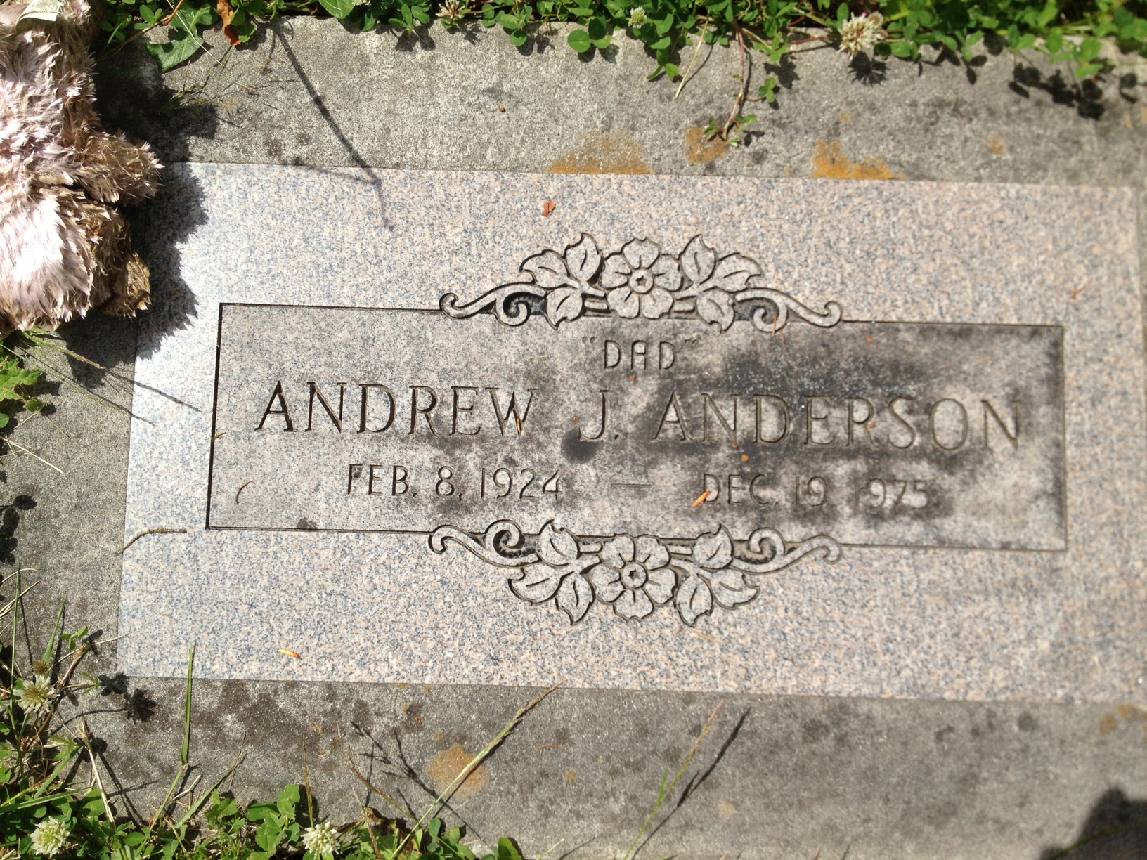 Andrew J. Anderson