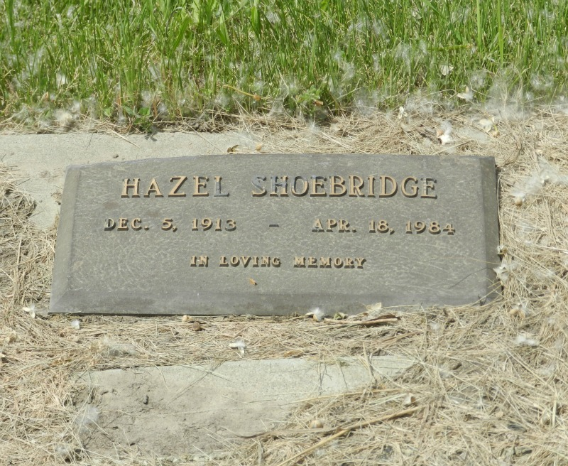 Hazel Shoebridge