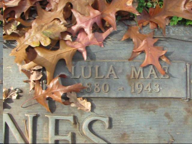 Lula Mae <i>Rees</i> Haines