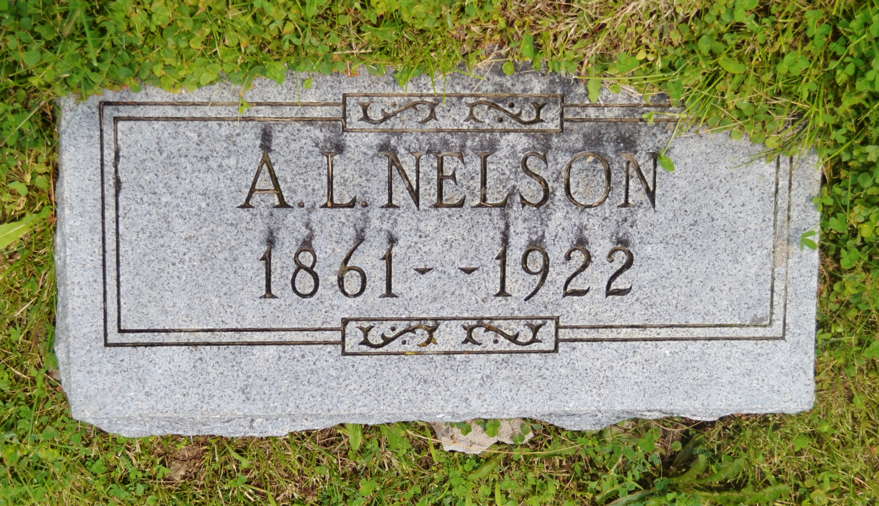 A. L. Nelson