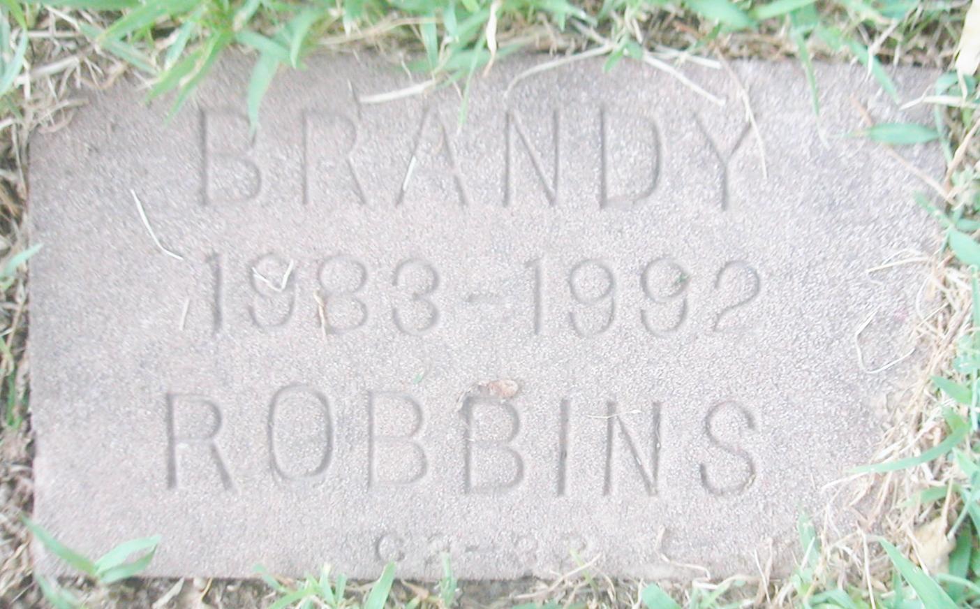 Brandy Robbins Nude Photos 29