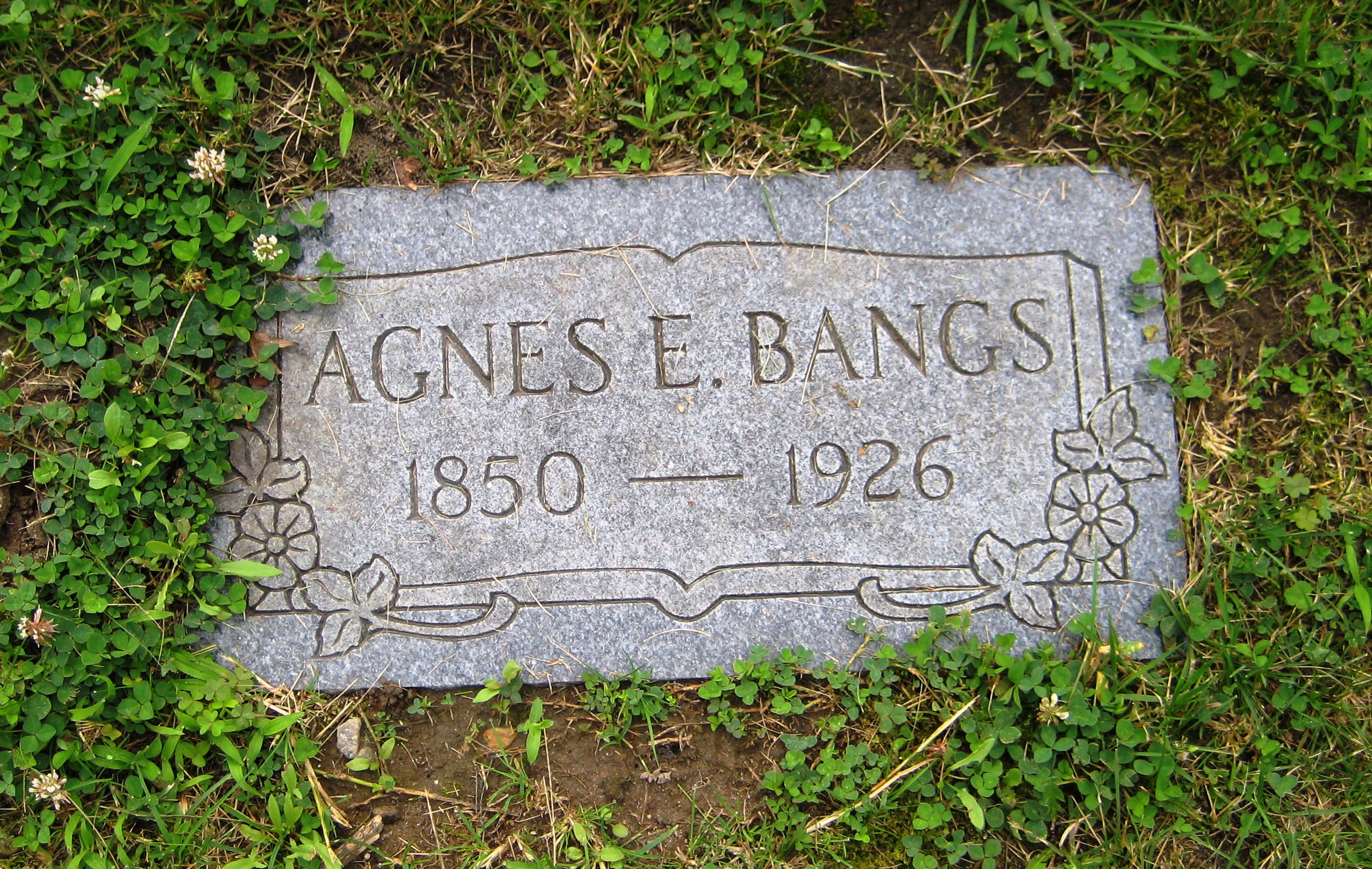 Agnes Bangs