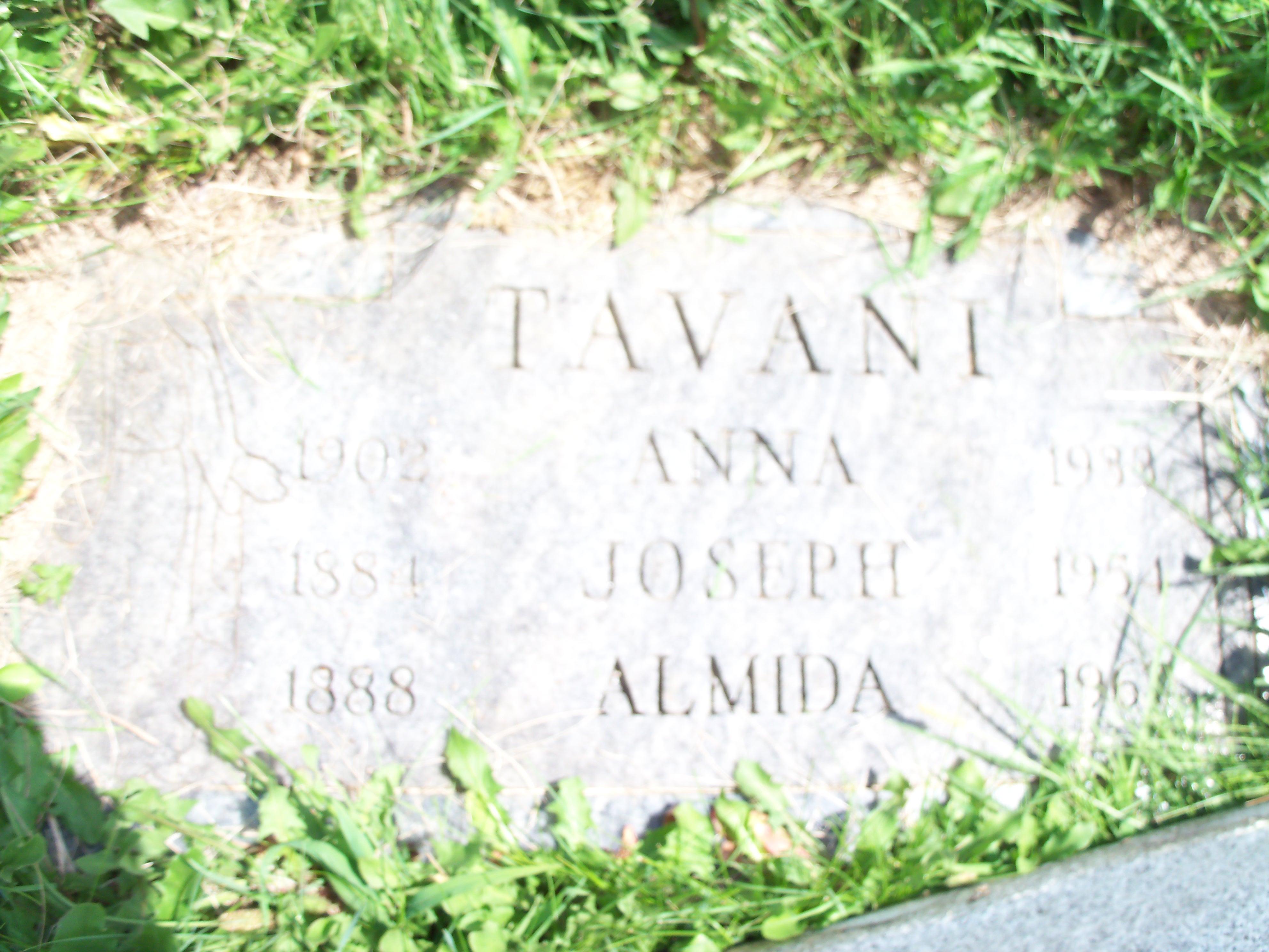 Almida <i>DeSimone</i> Tavani