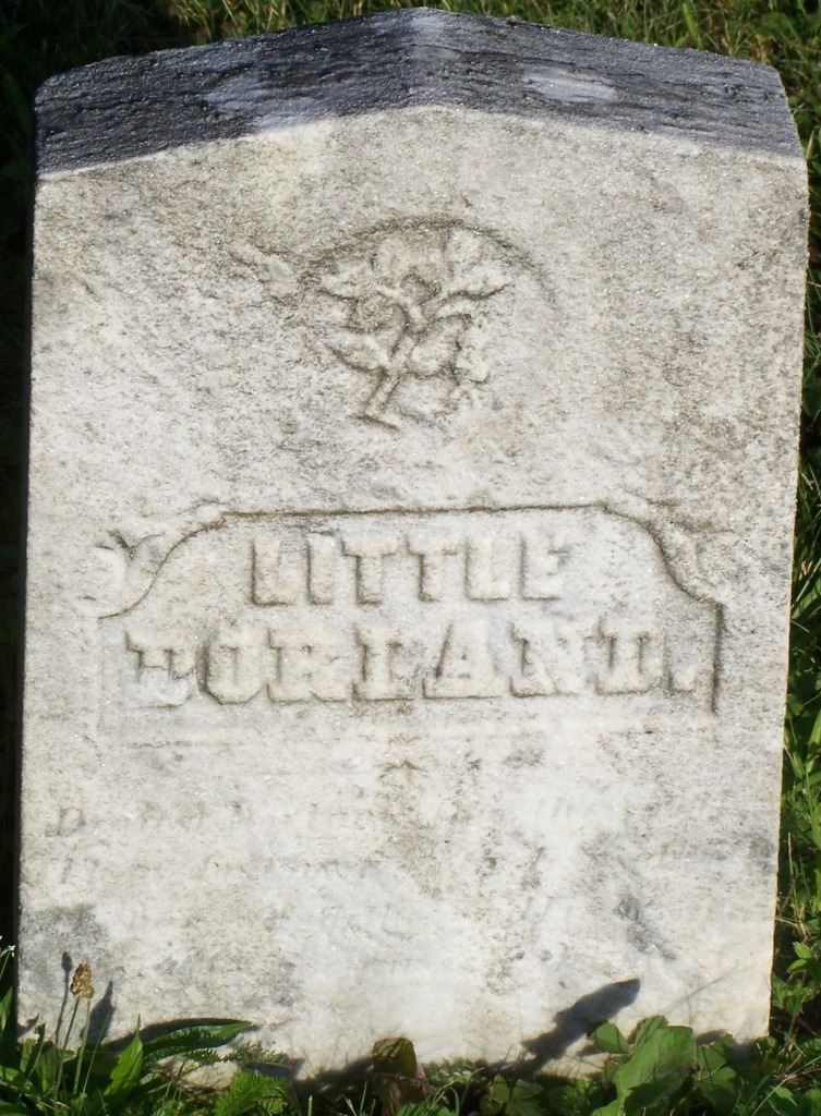 Dorland W Bowman