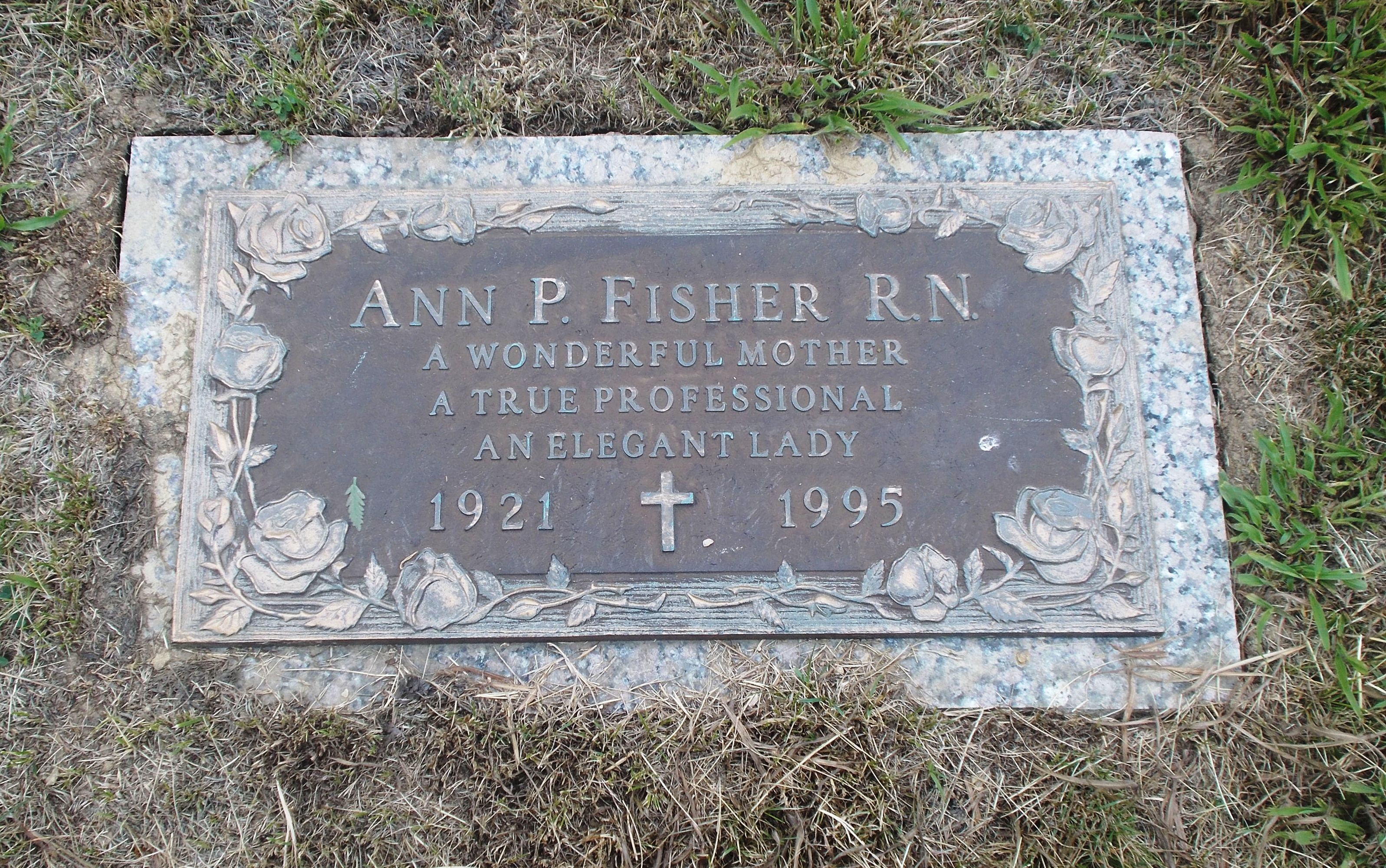 Ann P Fisher