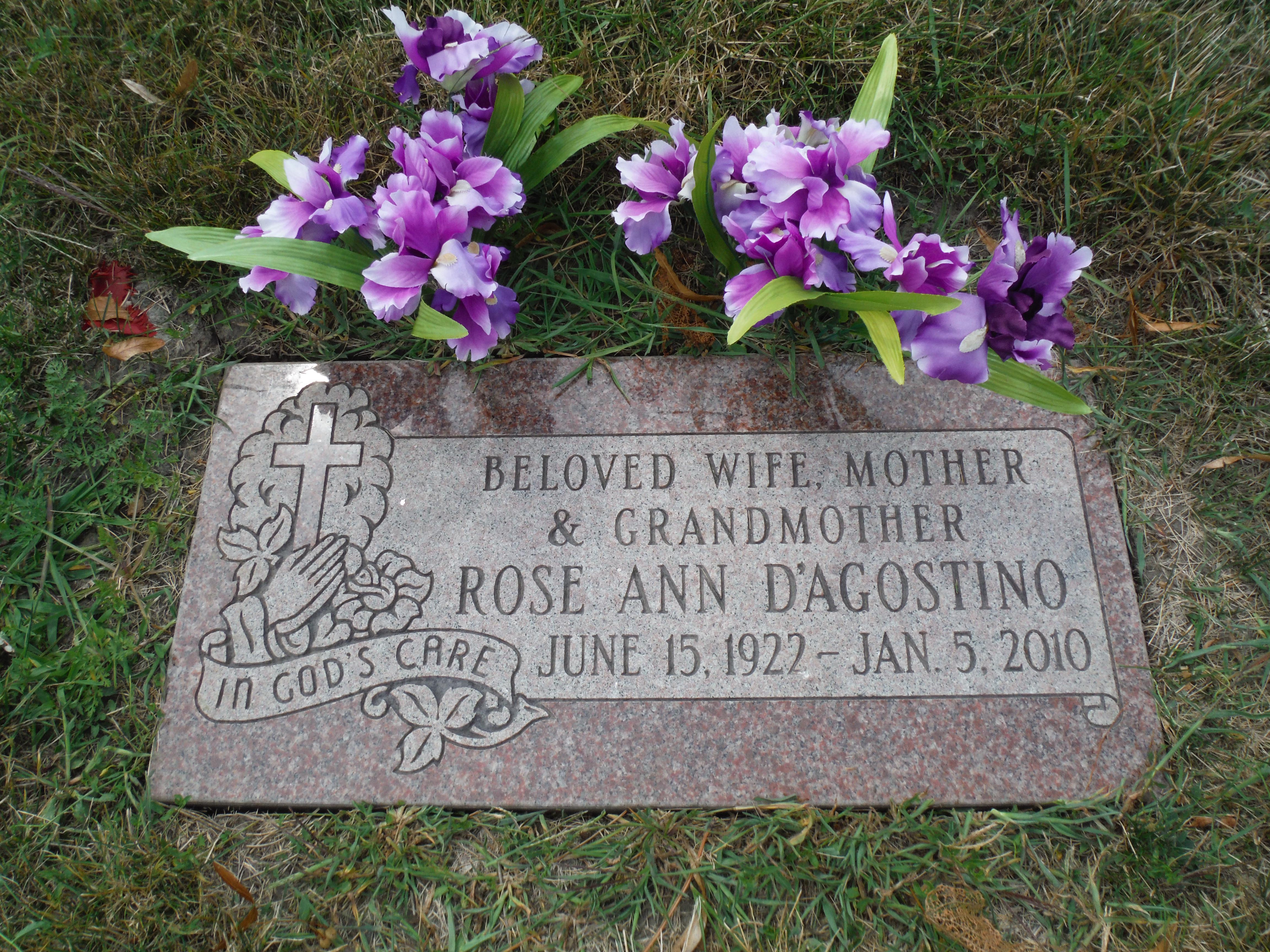 Rose Ann <i>Raschillo</i> D'Agostino