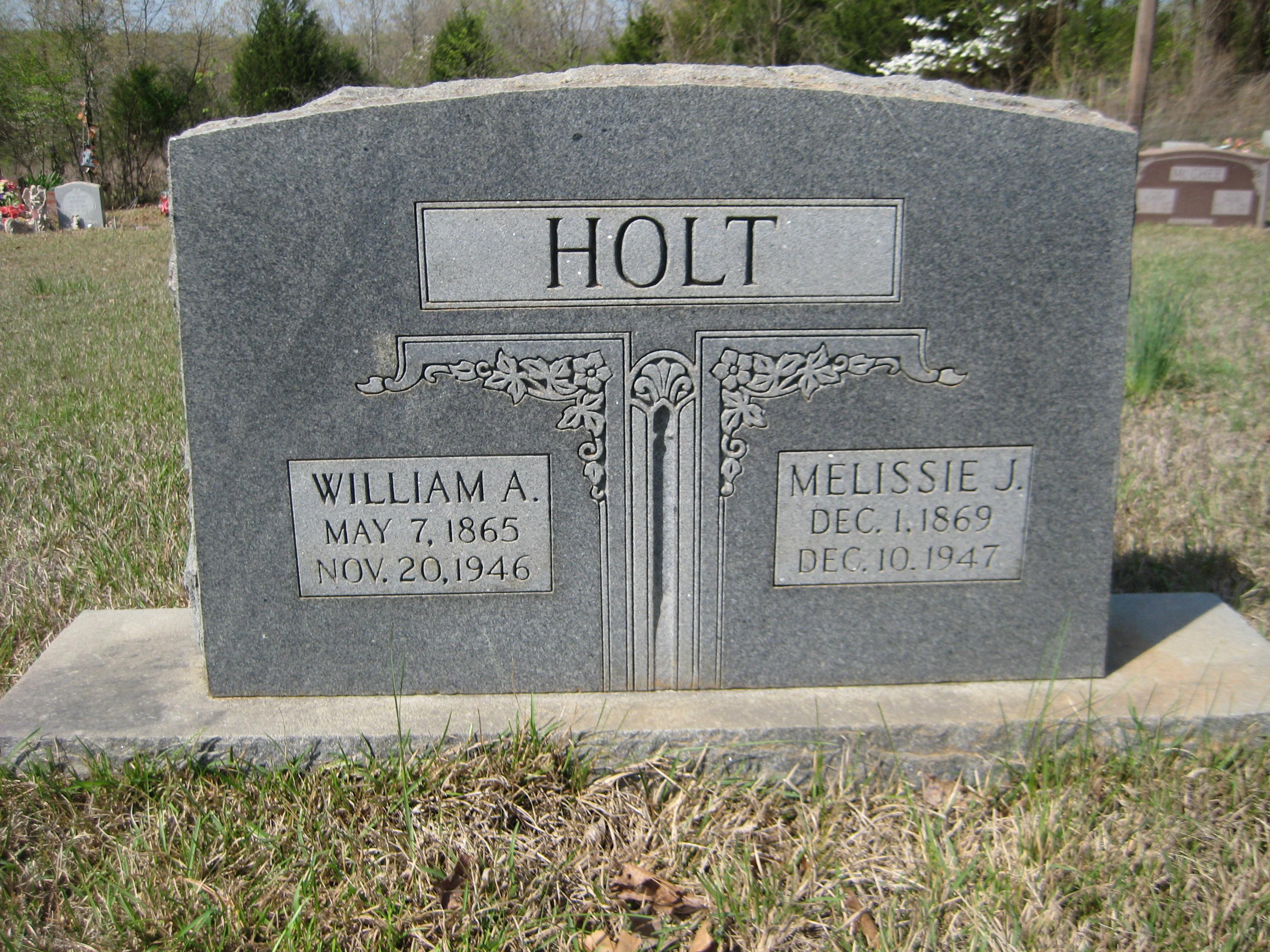 Melissie Jane <i>Dalton</i> Holt