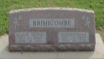 Ronald S. Brinicombe