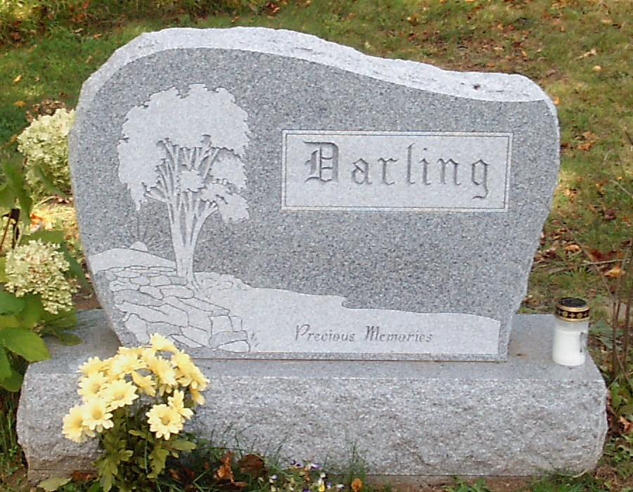 Raymond E Darling