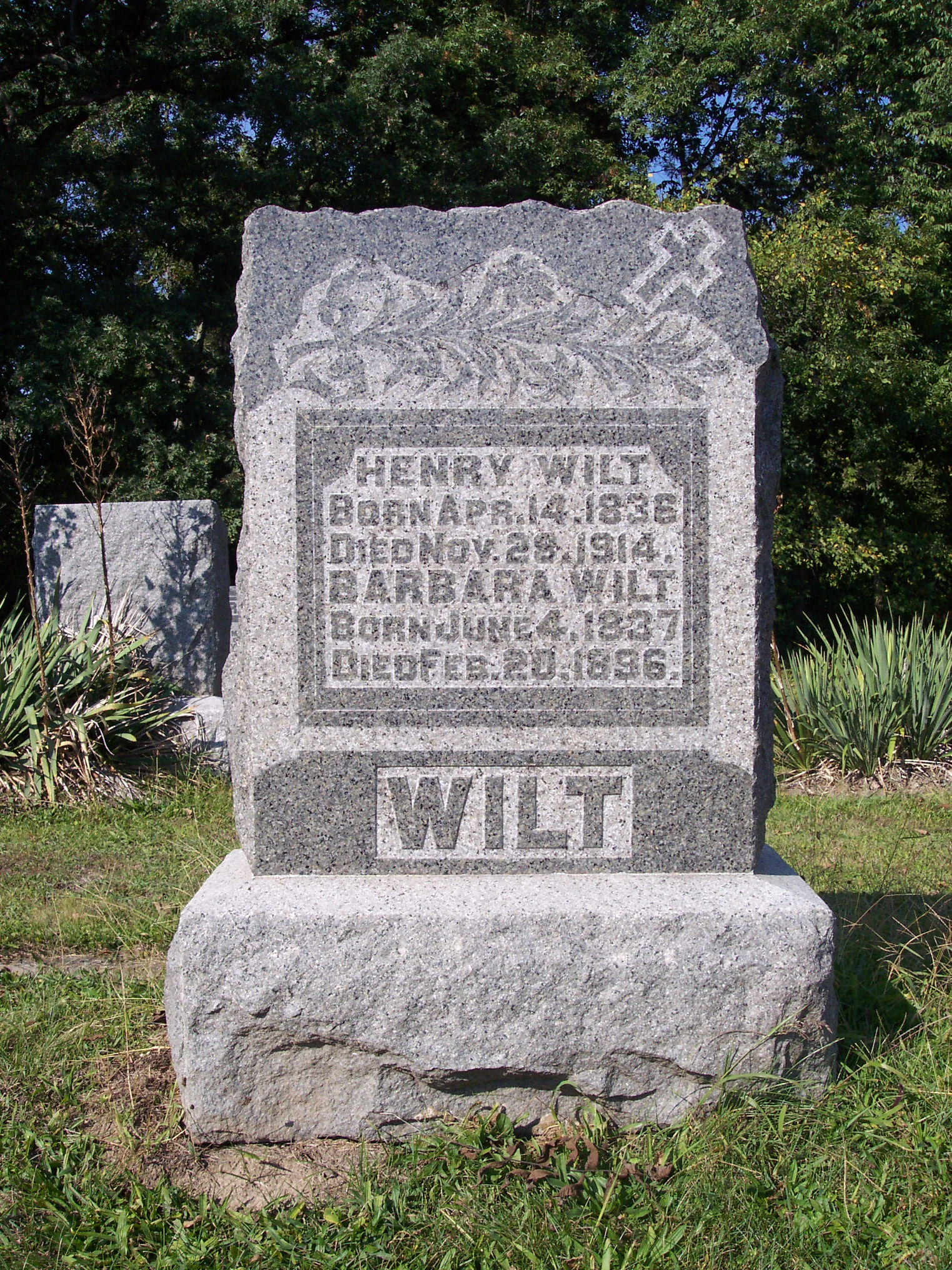 Henry Wilt, Jr