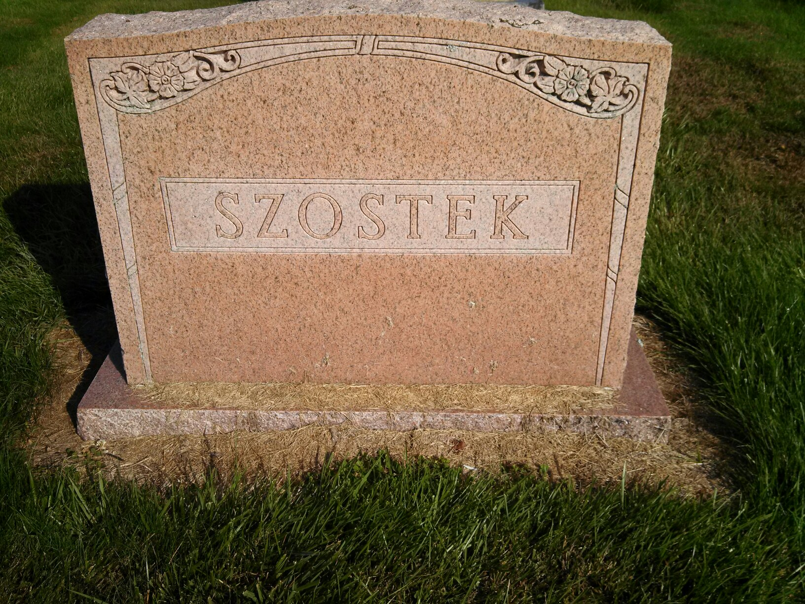 Peter j szostek 1917 1972 find a grave memorial death event date 22 may 1972 event place springfield massachusetts certificate number 019983 birth date birthplace massachusetts pete szosteks aiddatafo Image collections