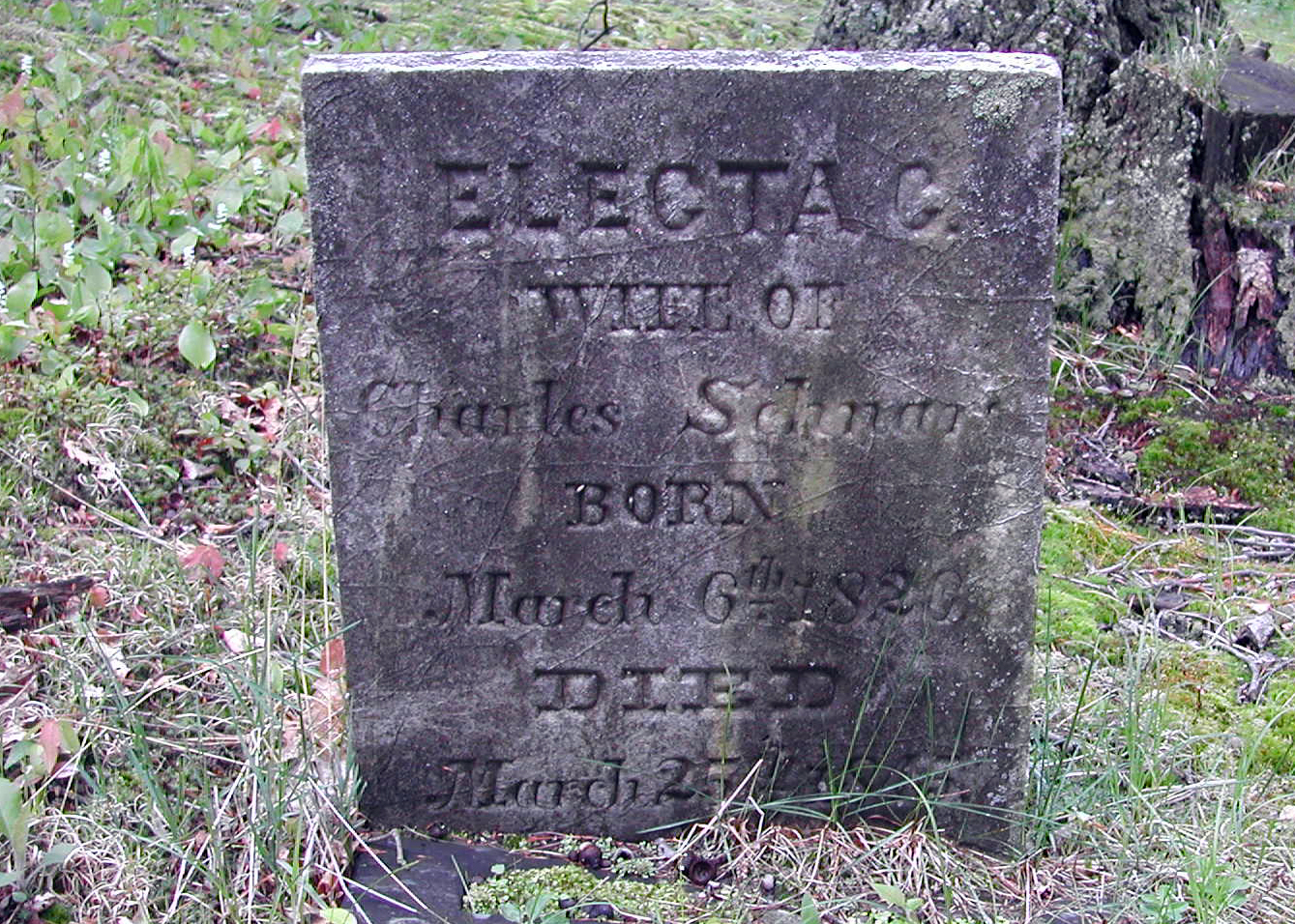 Electra <i>Woodworth</i> Schnars